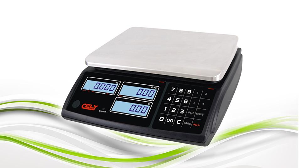 Dibal PI-100 RS - przykład wagi elektronicznej